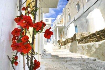 Фотообои прогулка по греческим улочкам