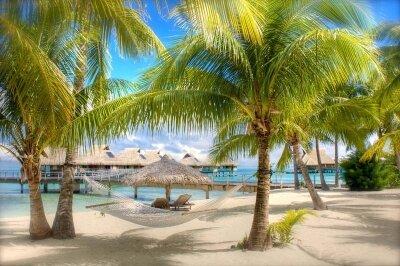 Фотообои песчаный пляж с пальмами у моря