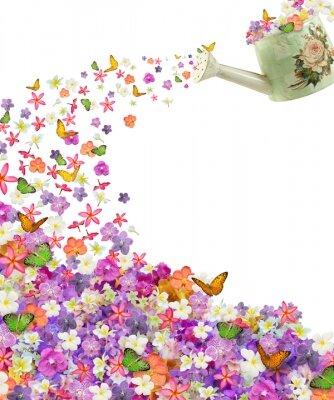 Арт фотообои Лейка с цветами и бабочками