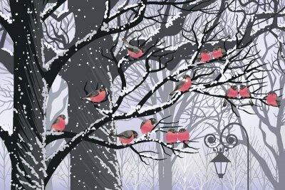 Арт фотообои снегири холодной зимой