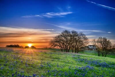 Фотообои Красивый закат