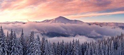Фотообои Лес в снегу