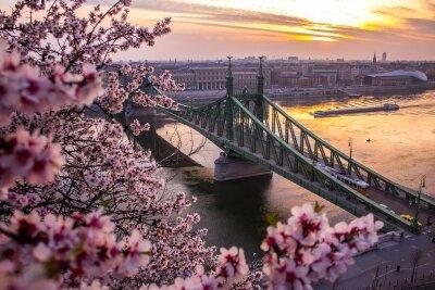 Фотообои Весна в Будапеште