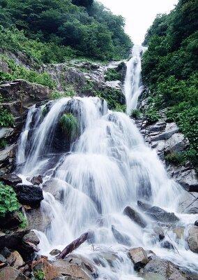Фотообои высокий спадающий водопад