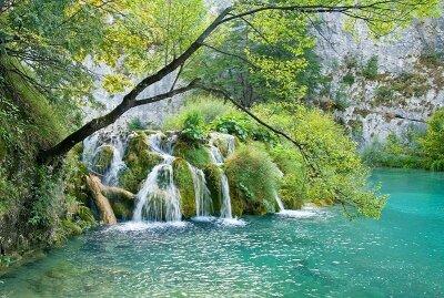 Фотообои Национальный парк
