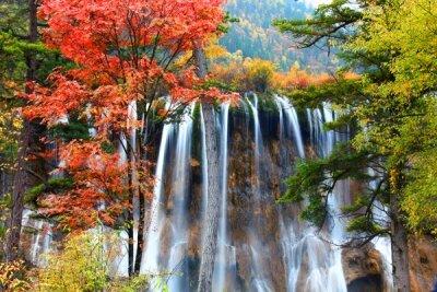 Фотообои водопад в лесу осенью