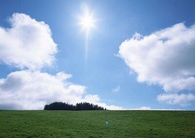 Фотообои Солнце над полем