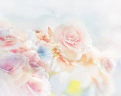 Фотообои Чувственность цветов