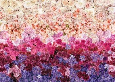 Фотобоои Розы и климатис