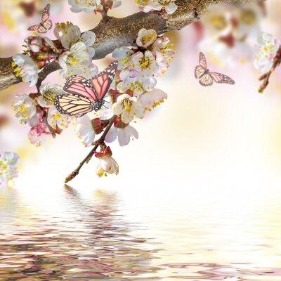 фотообои бабочки на ветке