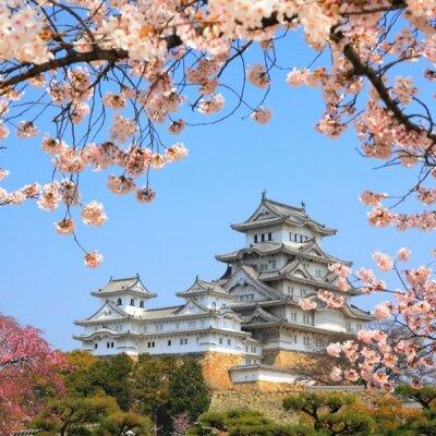 Фотообои для спальни Японский дворец