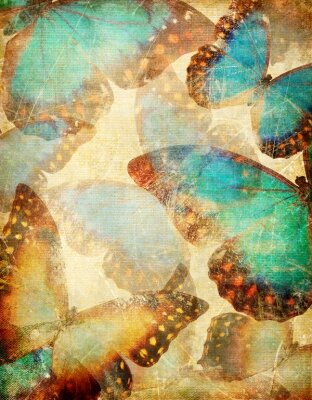 Фотообои в прихожую Бабочки