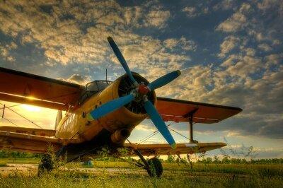 Фотообои для офиса Старый самолет