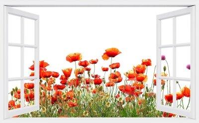 Фотообои с окном Маковое поле