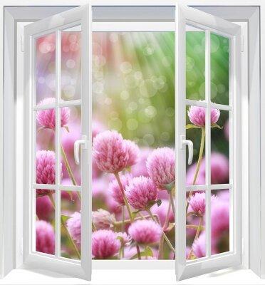 Фотообои с окном Полевые цветы