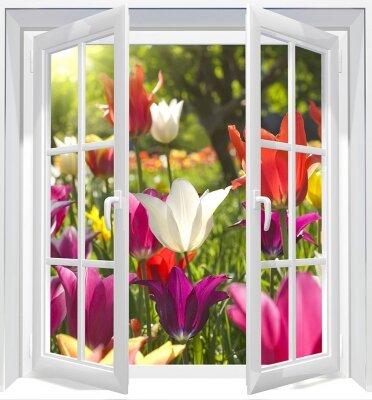 Фотообои с окном Вид на поле тюльпанов