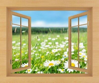 Фотообои с окном Ромашковое поле