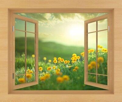 Фотообои с окном Поле с одуванчиками