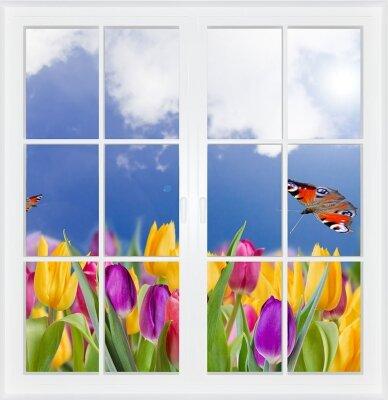 Фотообои с окном Поле с тюльпанами