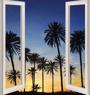 Фотообои с окном Пальмы на закате