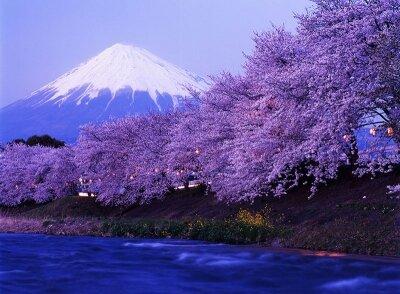 Вершина Фудзиямы