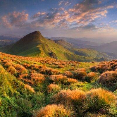 Зеленые склоны