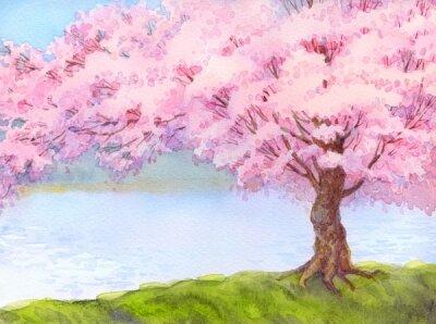 Фотообои розовое дерево возле реки