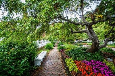 Парк с цветами
