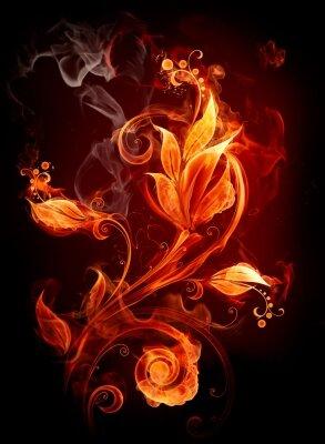 Креативные фотообои Огненный цветок