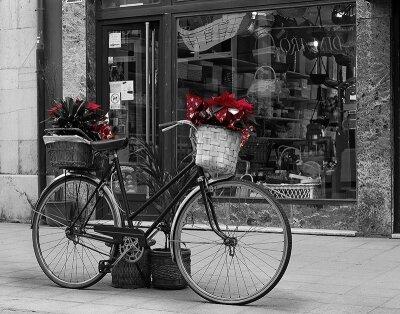 Черно-белые фотообои Городской велосипед
