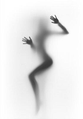 Черно-белые фотообои «Силуэт девушки»