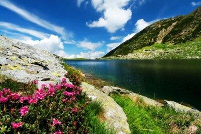 потрясающий вид на горы и реку