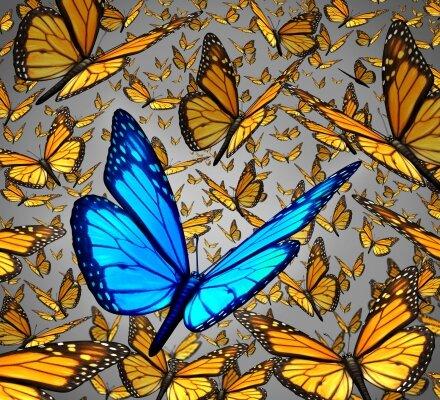 3д фотообои Бабочки
