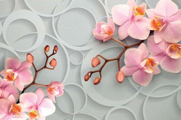 Фотообои 3д орхидеи