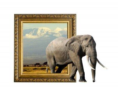 Фотообои И пришел слон