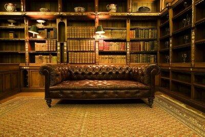 Интерьеры диван и книги